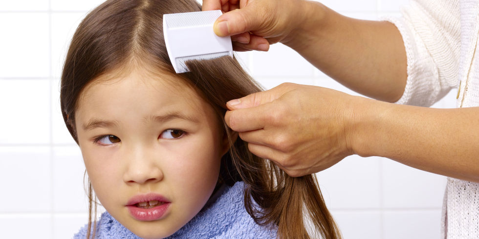 treatments for head lice, crab lice and scabies, Skeleton